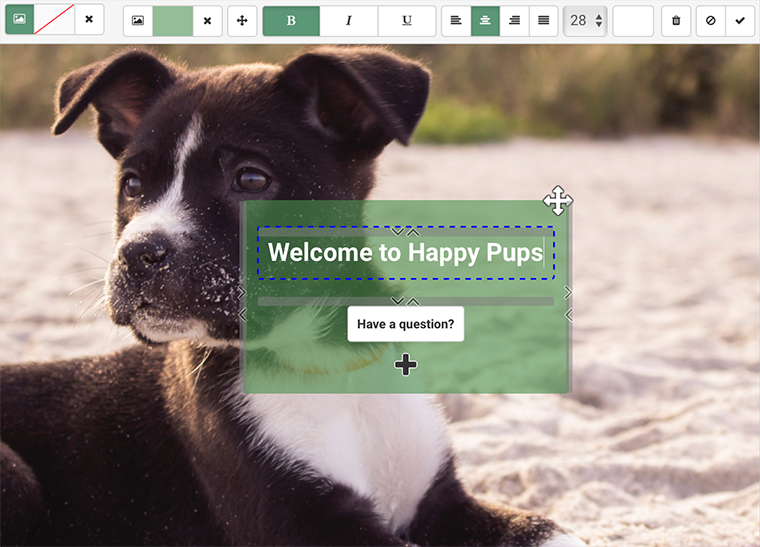 Easy Busy Pets - Pet business software